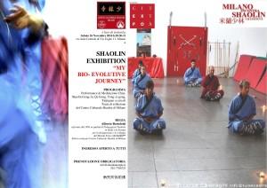 shaolin-exhibition-my-bio-evolutive-journey