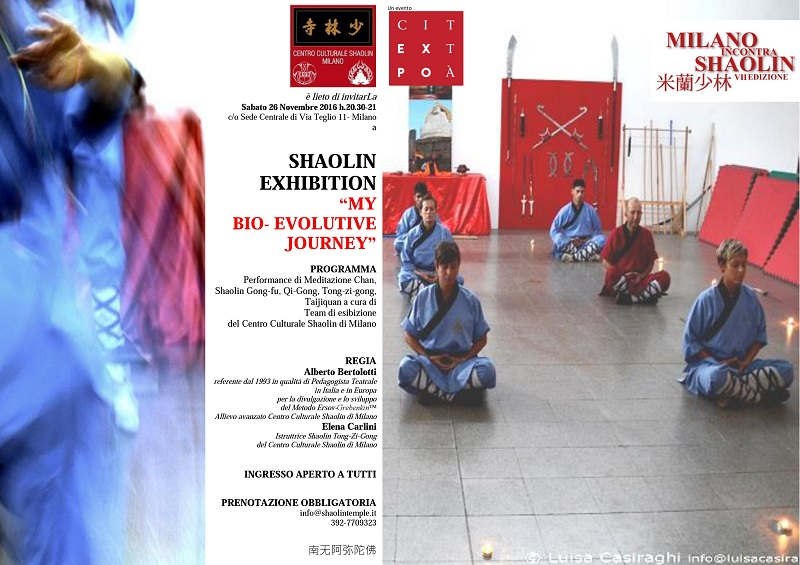 mis-2016-shaolin-exhibition-my-bio-evolutive-journey